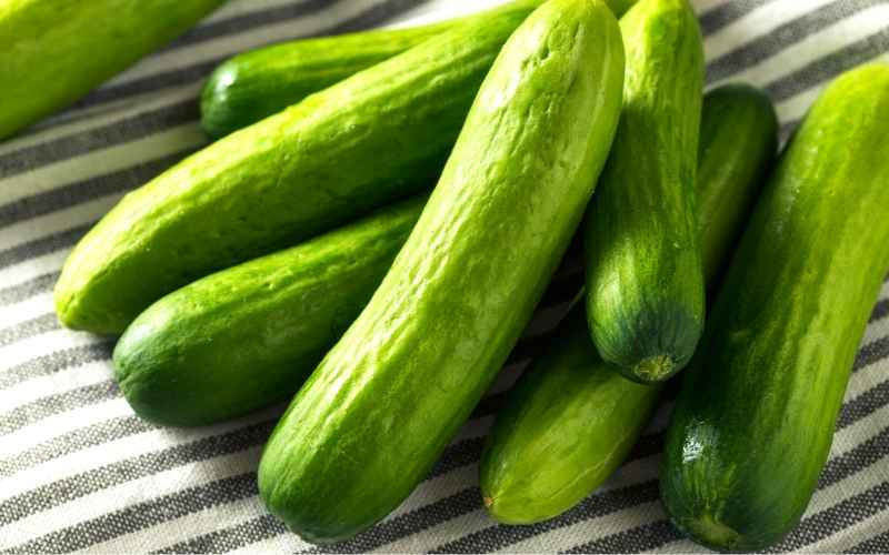 Fun Facts About Greenhouse Cucumbers